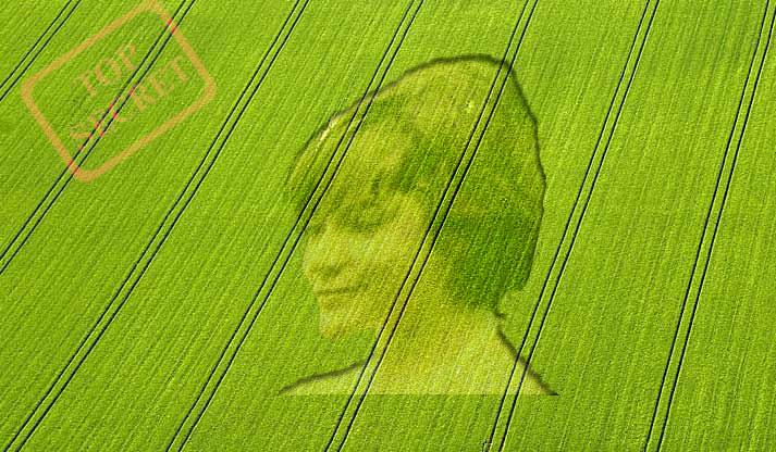 Круги на полях как их рисуют