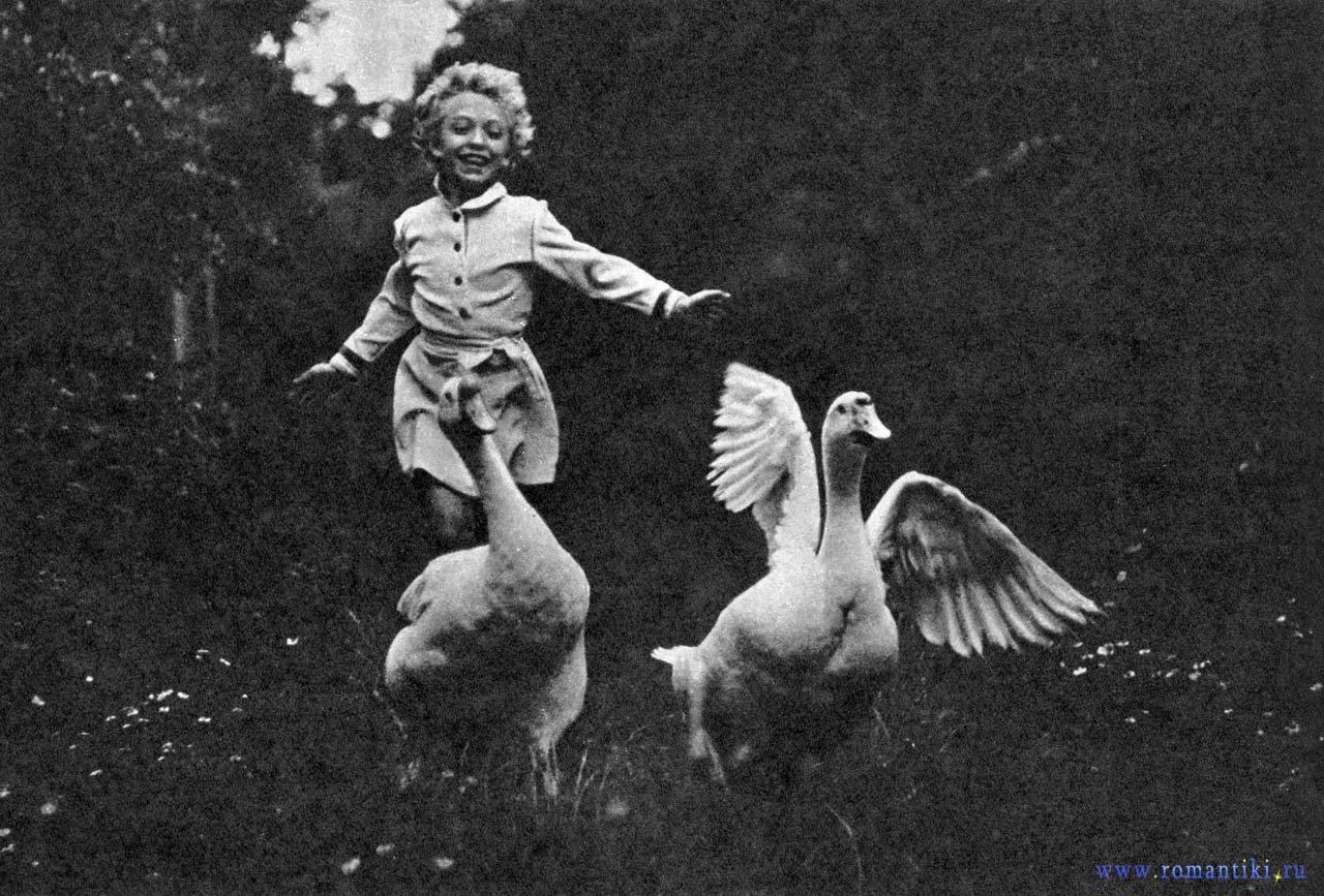 Будешь с детства гусей бояться